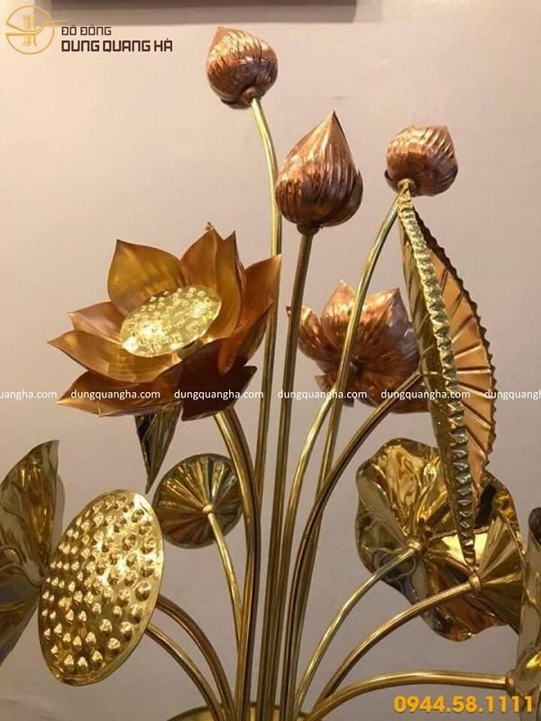 Ý nghĩa của hoa sen đồng trong phong thủy