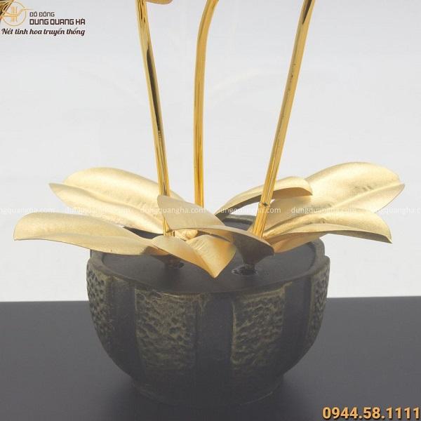 Quà lưu niệm chậu lan 3 cành mạ vàng đẹp tinh xảo, giàu ý nghĩa