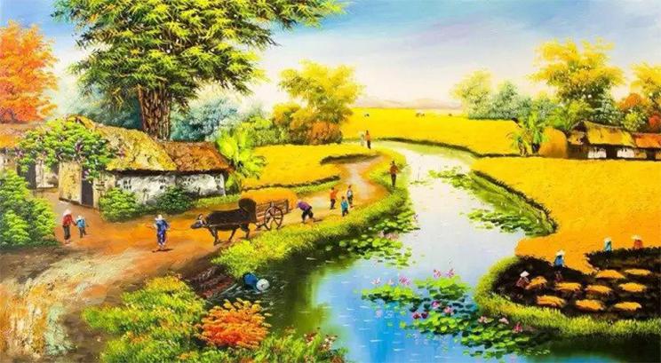 Hình ảnh đồng quê Việt Nam