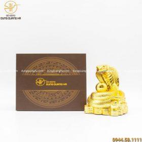Hộp quà tượng rắn mạ vàng 24k đẹp sang trọng, cao cấp